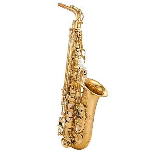 DUTUI Sassofono Contralto in Mi Bemolle, Strumento A Fiato per Bambini, Strumento di Prova per Banda per Principianti per Adulti, Set Completo di Sassofono per Principianti
