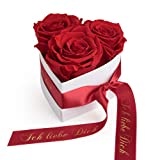 ROSEMARIE SCHULZ Heidelberg Infinity Herz Rosenbox in Herzform mit konservierten Rosen in Rot Geschenk zum Valentinstag (Rot, Small)