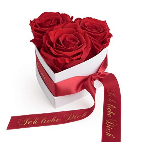 ROSEMARIE SCHULZ Heidelberg Infinity Rosenbox in Herzform mit konservierten Rosen in Rot Geschenk zum Valentinstag (Rot, Small)