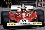 Poster 30 x 20 cm: Niki Lauda, Monaco Grand Prix, Monte