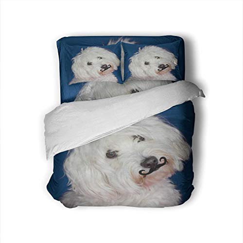 Hitecera Maltese Dog Tilting The - Side and Wearing A Fake Mustache.Isolated Against Blue Colored Background Spain,Hotel Luxury Queen Size Bed Sheets Set- Fade Resistant Animal Queen