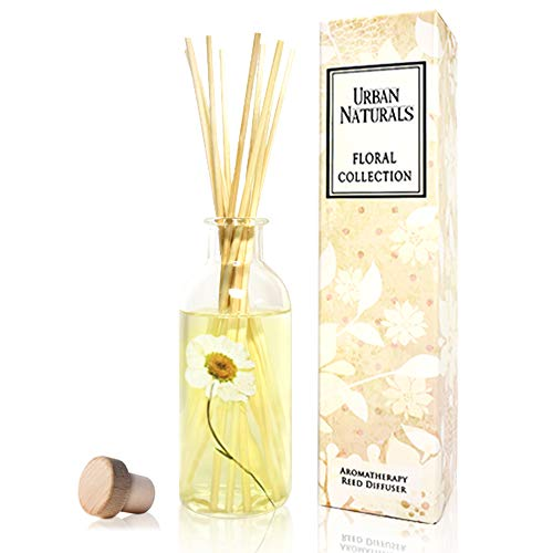 Urban Naturals Gardenia Floral Scented Reed Diffuser Sticks with Dried Chrysanthemum Flower | Add Charm to Your Home Decor! Jasmine, Ylang Ylang, Tuberose & Amber Notes | Vegan. Made in The USA