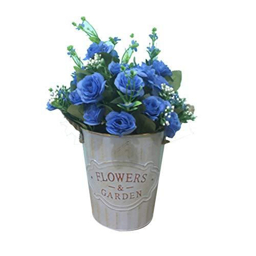 TELLW 1 lot de pots de fleurs en fer - Décoration rétro - Mini pots de fleurs - Pour magasin de fleurs - Grande boîte en métal.