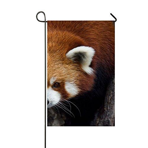 MERCHA Summer personnalité Rouge Panda Photos Jardin Drapeau Polyester extérieur Drapeau Home Party – Impression Recto Verso