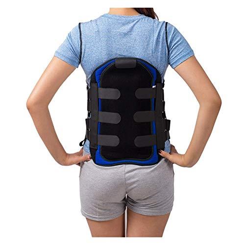 Corsé lumbar lumbar sacro corsé lumbosacro, soporte para ortesis espinal, cinturón de apoyo para aliviar el dolor de cintura para hombres y mujeres (tamaño grande: grande) ✅