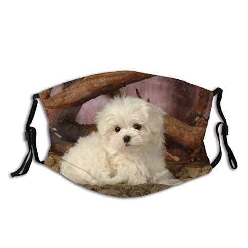 IUBBKI White Cute Dog Mundschutz Adult Reusable Washable Face Cover FashionforFace Schal Bandana mit Zwei Filtern