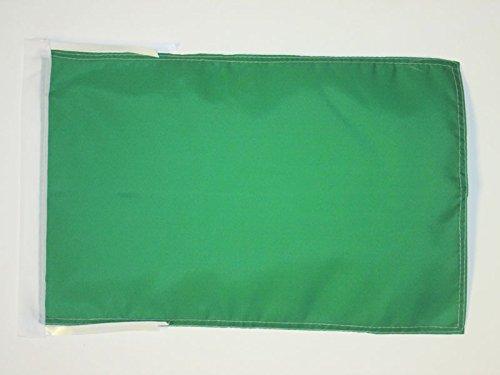 AZ FLAG Flagge GRÜNER Schiedsrichter 45x30cm mit Kordel - Motorsport RENNLEITUNG GRÜN Fahne 30 x 45 cm - flaggen Top Qualität