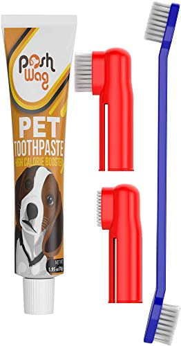 Dog Toothpaste and Toothbrush Set [REMOVES FOOD DEBRIS] Double Sided with Long Curved Handle [SUPER EASY CLEANING] - Best Soft Silicone Pet Toothbrush for Cats And Dogs [EXPANDABLE FINGER ENTRY] - Col