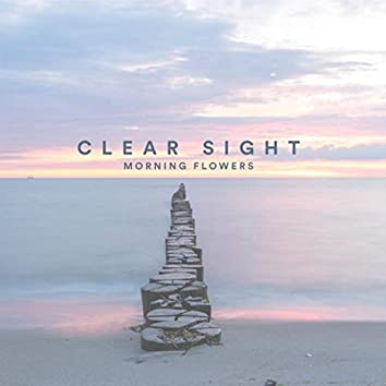 Clear Sight