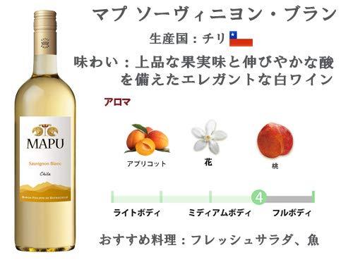 エノテカ直輸入バイヤー厳選白ワイン好きのための辛口白ワインセット[750ml×5本]