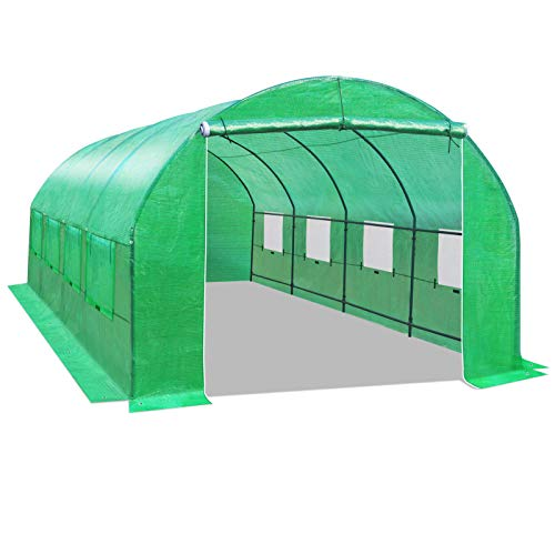 BenefitUSA GH052 Larger Hot Green House 20'X10'X7' Walk in Outdoor Plant Gardening Greenhouse