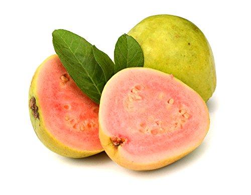 RWS graine de fraise de goyave (5)