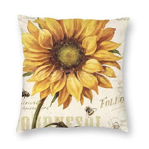SUN DANCE Funda de cojín de terciopelo natural con diseño de flores de algodón, cuadrada, decorativa, 45,7 x 45,7 cm (pintura al óleo)