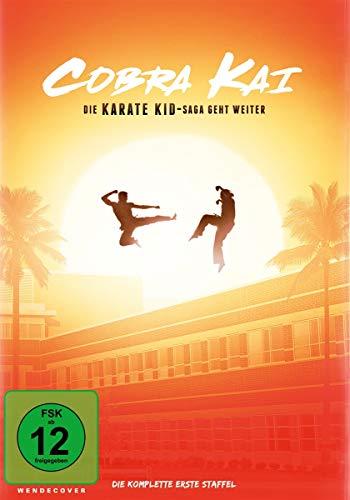 Cobra Kai - Die komplette erste Staffel [2 DVDs]