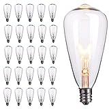 25-Pack Edison Replacement Light Bulbs,7-Watt E12...