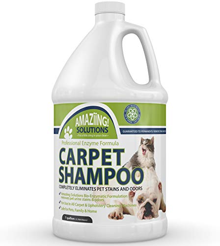 Amaziing Solutions Pet Carpet Shampoo Odor Eliminator and Stain Remover Carpet Cleaner for Dog Urine and Cat Pee, Professional Strength Enzymatic Solution, Natural Enzymes for Carpet (Gallon)