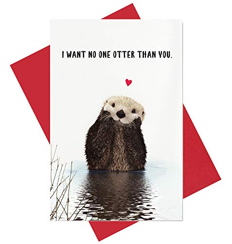 Otter Love Card, I Want No One Otter Than You Funny Anniversary Birthday Card, Valentine