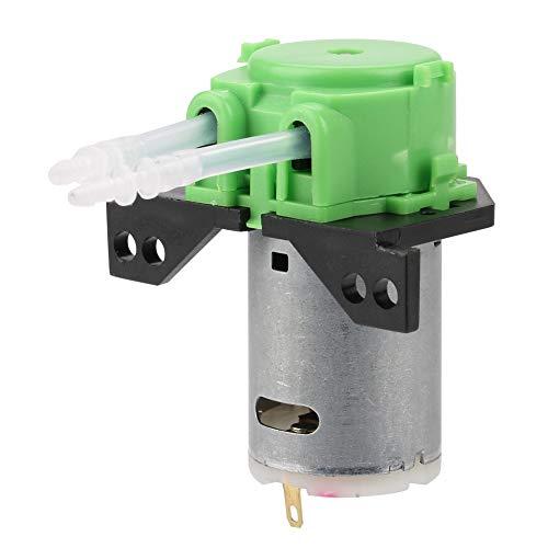 Labor Wasserpumpe, Schlauchpumpe for Aquarium Labor Chemische Analyse 12 V 24 V DIY Micro Automatische Wasserpumpe Dosierpumpe (Green 12V 2 4)