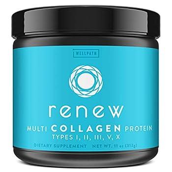 Renew Multi Collagen Protein Powder - 5 Types of Collagen - Hydrolyzed Grass-Fed Bovine Marine Chicken and Egg Collagen Peptides - Type I II III V and X - Keto Friendly Supplement