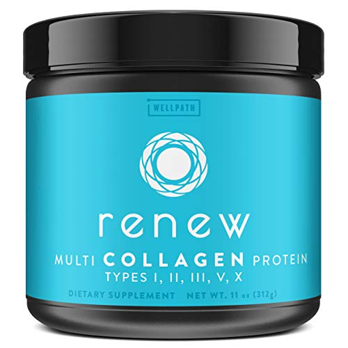 Renew Multi Collagen Protein Powder - 5 Types of Collagen - Hydrolyzed Grass-Fed Bovine, Marine, Chicken and Egg Collagen Peptides - Type I, II, III,...
