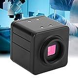 Rosvola USB Mikroskop Kamera, hochwertige industrielle HDMI Digitalvideo C-Mount Mikroskop Kamera 100-240V(EU)