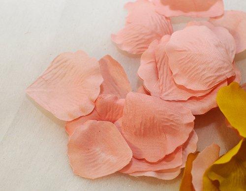 Accessoires Différents 100 pétales de Rose rose