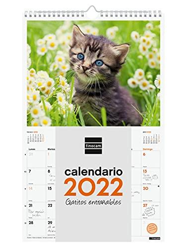 Finocam - Calendario 2022, 250 x 400 mm, immagini da parete a spirale per scrivere gatti...