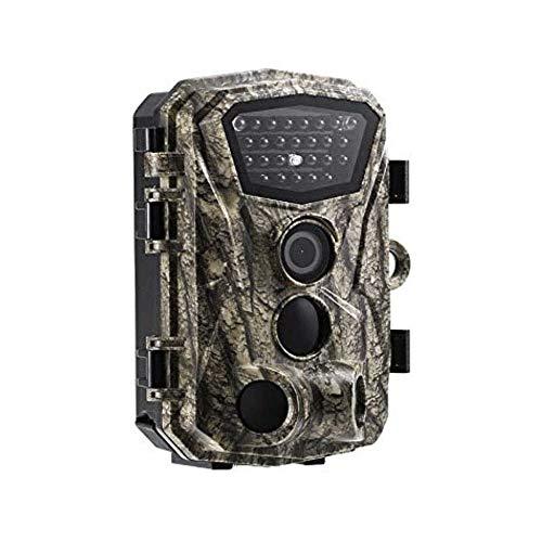 Z-Color Wildlife Kamera 18MP 1080P Hinterspiel-Kamera-Bewegung aktivierte Infrarot-Nachtsicht mit 2,4
