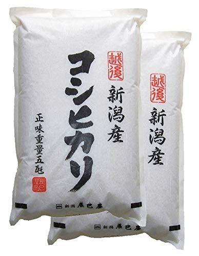 新米 1年産 新潟県産 白米 コシヒカリ 10kg(5kg×2袋)新潟辰巳屋 (産地直送米)