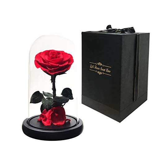 Beauty and the Beast Red Rose