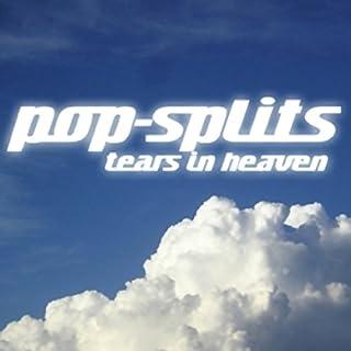 Tears in Heaven (Pop-Splits) 21 traurige und schöne Geschichten Titelbild