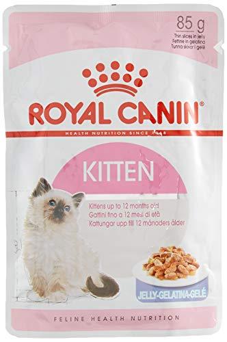 ROYAL CANIN Kitten Instinctive, Comida para Gatos - Paquete de 12 x 85 gr - Total: 1020 gr ✅