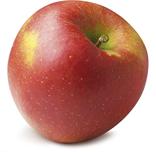 Obst & Gemüse Bio Apfel Jonagold (1 x 1000 gr)