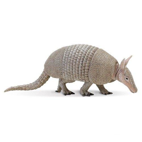 Safari Ltd  Incredible Creatures Armadillo