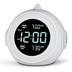 Welgo Dual Alarm Clock Radio for Weekday/Weekend, 6 Wake Up Sounds, 0-100% Brightness Dimmer, Adjustable Volume, Battery Backup, FM Radio with Sleep Timer, Earphone Jack, Small Size for Bedroom, Kid