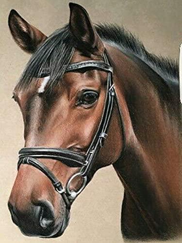 Cuadro de diamantes de imitación de caballo conjunto completo bordado Animal punto de cruz mosaico Kit de bordado pintura de diamantes A4 40x50cm