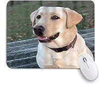 マウスパッド 個性的 おしゃれ 柔軟 かわいい ゴム製裏面 ゲーミングマウスパッド PC ノートパソコン オフィス用 デスクマット 滑り止め 耐久性が良い おもしろいパターン (ラブラドール子犬レトリーバー犬)