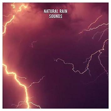 16 New Natural Rain Sounds