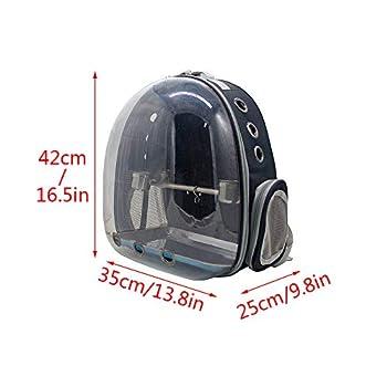 Sobotoo Sac de Transport pour Perroquet pour Animal Domestique Sac à Dos Transparent Respirant 360° avec Tasse pour Voyage en Plein air