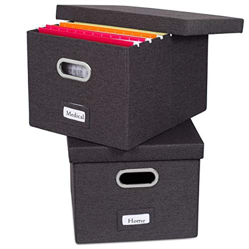 Collapsible file organizer