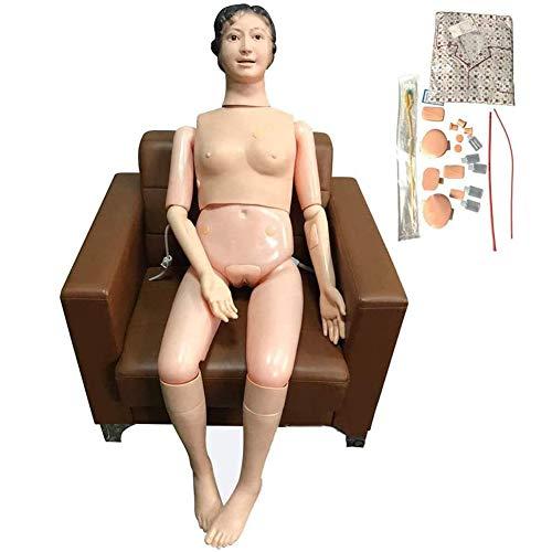 WRQ Modelo Educativo Multifuncional Simulador Atención Al Paciente Maniquíes Enfermería Primeros Auxilios Trauma Maniquí Formación Anatómica Humana para La Enseñanza