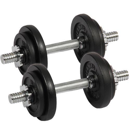 [リーディングエッジ] アイアンダンベル 20kgセット (片手10kg×2個) LE-IDB10 ダンベルセット