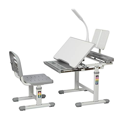 Diroan Kids Functional Desk and Chair Set, Height Adjustable Children School Study Desk with Tilt Desktop, Bookstand, LED Light, Metal Hook and Storage Drawer for Boys Girls (Gray)