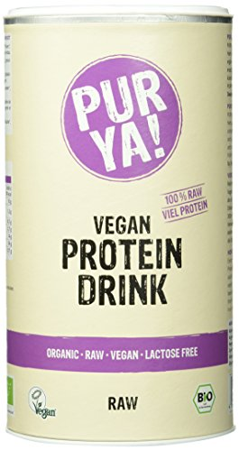 Purya Bio Vegan Protein Drink Raw-Energy, 1er Pack (1 x 550 g)