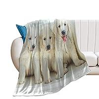 Cute Dog毛布、フランネル、マイクロファイバー、ラージフォーマット、ひざまずく、空調対策、帯電防止、抗菌、デオドラント、ふわふわ、肌にやさしい、薄く、軽量、洗える、暖かい、ファッショナブル、四季40*50cm
