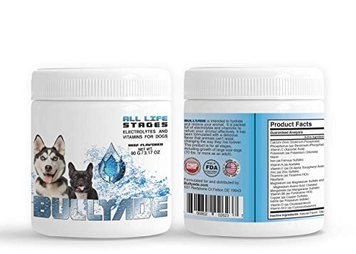Bullyade Natural Dog Supplement 3.17oz with 18 Vitamins & Minerals. Replenishes Electrolytes Fast, Quicker Safe Recovery from Parvo, Dehydration. Mixes with Water or Food. (Beef)