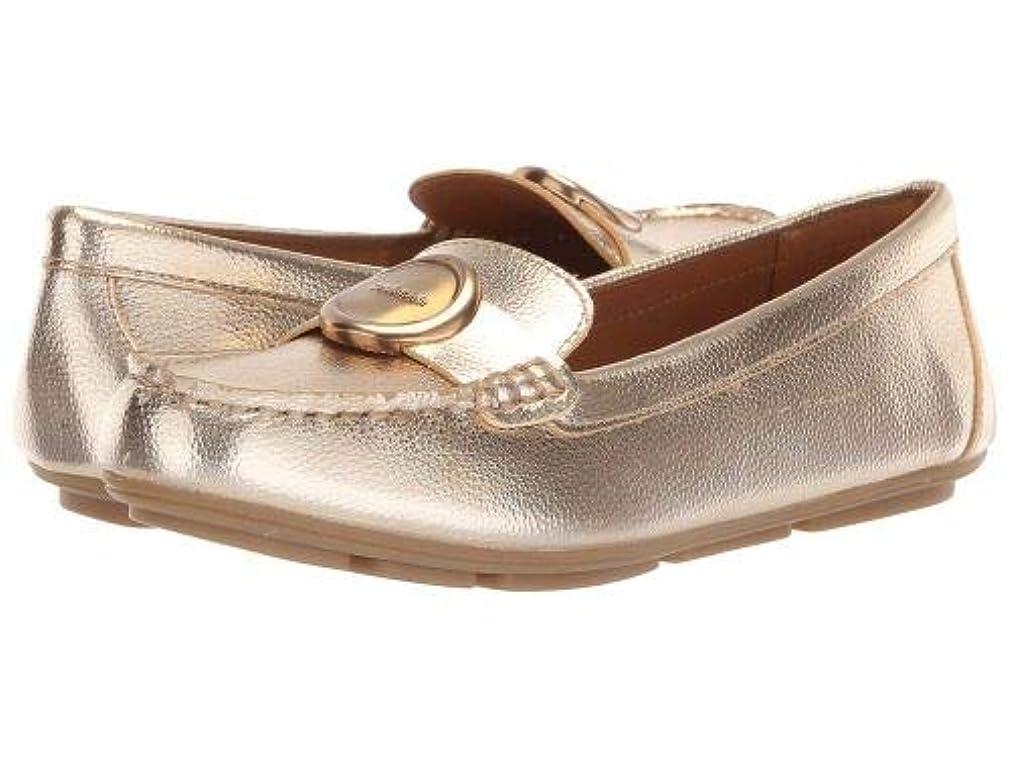 不適ペレット垂直Calvin Klein(カルバンクライン) レディース 女性用 シューズ 靴 ローファー ボートシューズ Leana - Soft Platinum [並行輸入品]