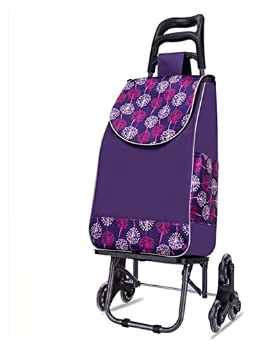 TabloKanvas Carro de la Compra Carritos de Utilidad portátiles Carrito Plegable Trolley Luz de Escalera de Escalera de Escalada con triángulo Rueda de Cristal (Color : B, Size : 98 x 27x 20cm)