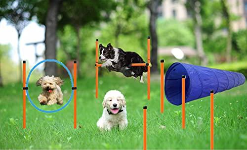 Agility-Ausrüstungs Set für Hunde, Agility für Hunde, Agility Set, Ausrüstung für den Agility-Kurs für Hunde, Starter-Kit für das Agility-Training für Dog, Hindernisse mit Hundetunnel, Hunde Training