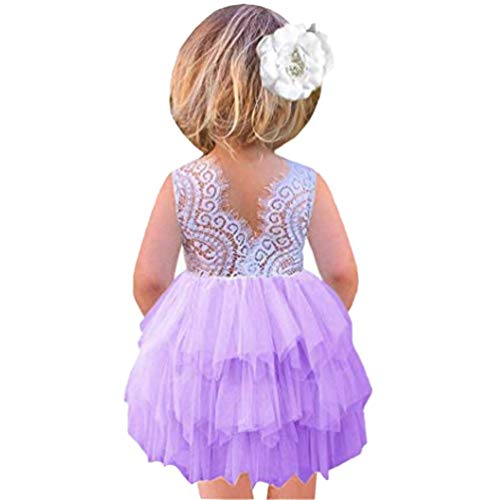Aline Beaded Backless Lace Flower Girl Dress Princess Tulle Tutu Party Baby Dress 2-3T Purple
